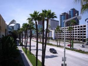 Улица с пальмами в США