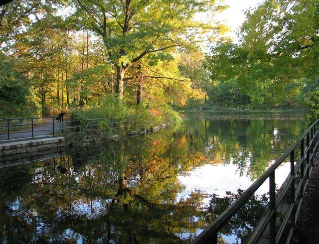 Озеро_в_Проспект_Парке