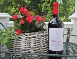 Бутылка_знаменитого_аргентинского _вина