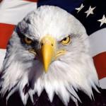 Что нужно знать о США?
