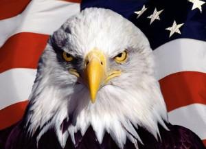 Символ_США_орел_на_фоне_американского_флага