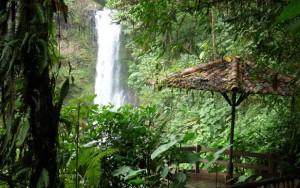 Водопад_в_парке La Paz Waterfall Gardens