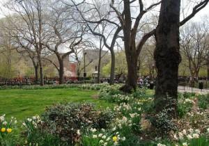Томкинс-сквер-парк