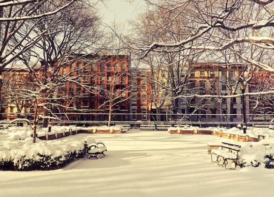 Томкинс-сквер-парк_зимой