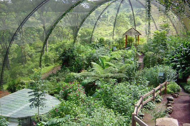Оранжерея_в_парке La Paz Waterfall Gardens
