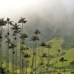 Национальные парки Колумбии