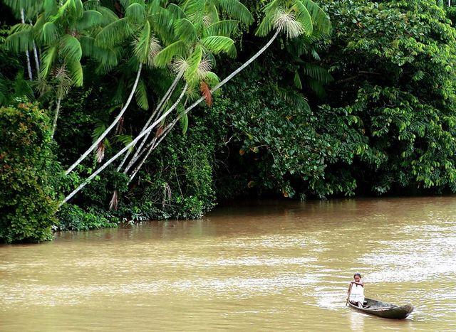 Природа_Амазонки