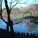 Фото Центрального парка Нью-Йорка