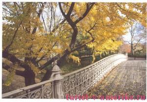 Центральный парк Нью-Йорка_11