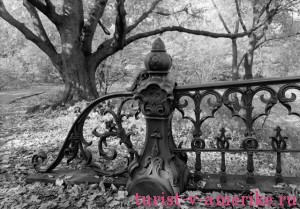 Центральный парк Нью-Йорка_23