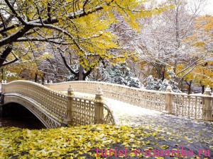 Центральный парк Нью-Йорка_27