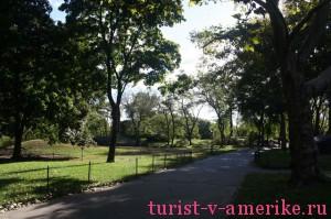 Центральный парк Нью-Йорка_30