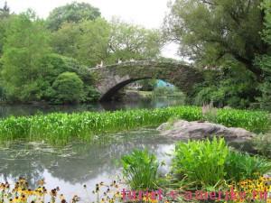 Центральный парк Нью-Йорка_37