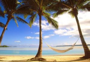 Гаити_пальмы