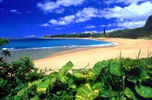 Восточное_побережье_Барбадоса