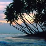 Юг Барбадоса