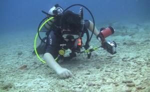 Diving_Club_US