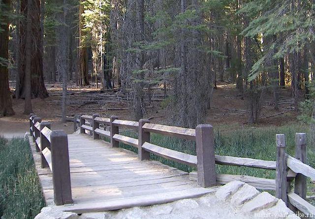 National.park.Yosemiti_usa