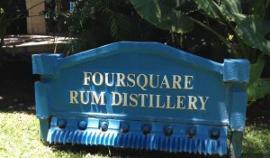 Foursquare Rum Distillery, Barbados, Rum Sixty Six