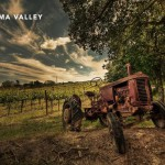 Долина виноделия Сонома