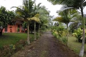 Costa Rica_отдых